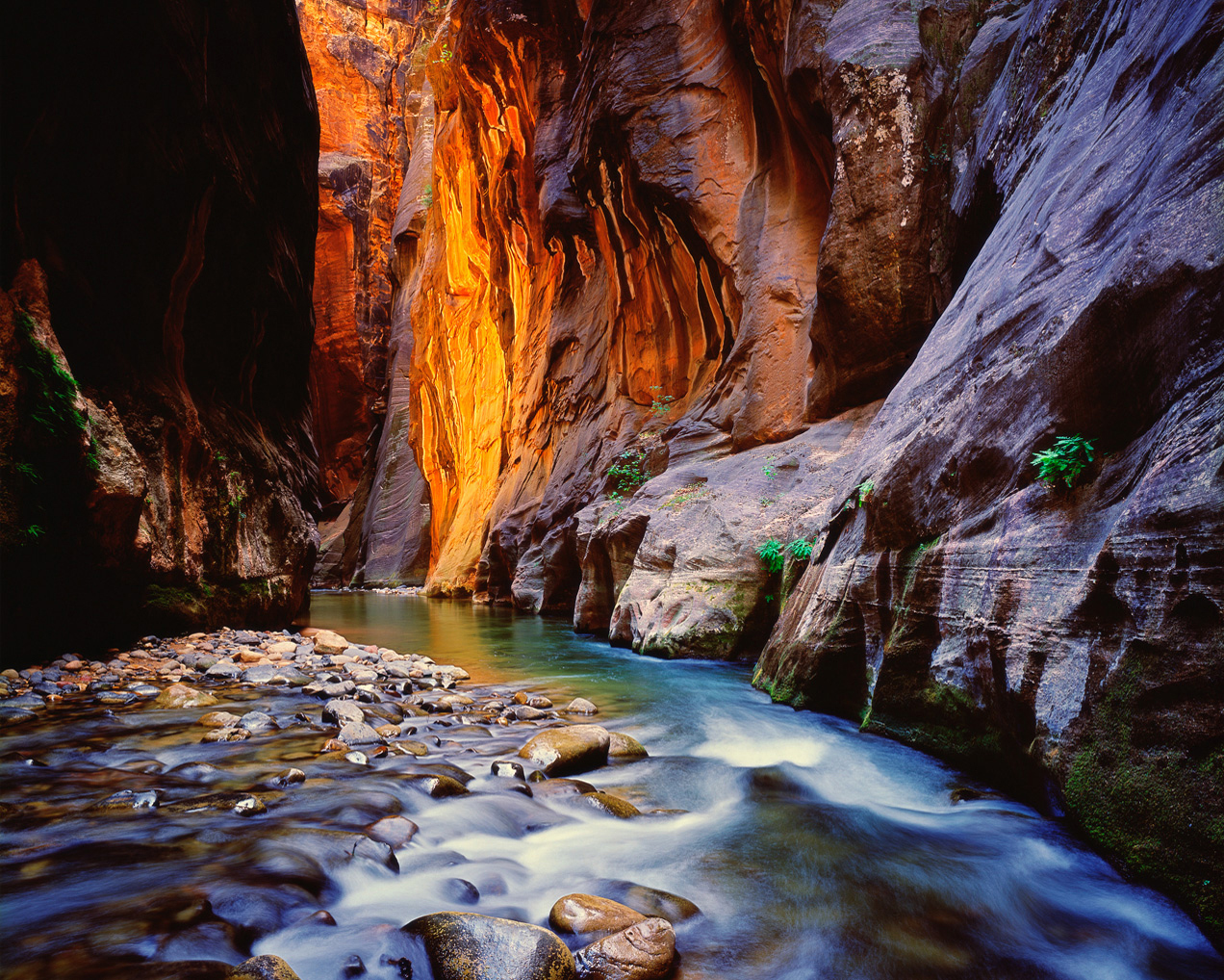 Virgin River in slot canyon photo at Zion National Park